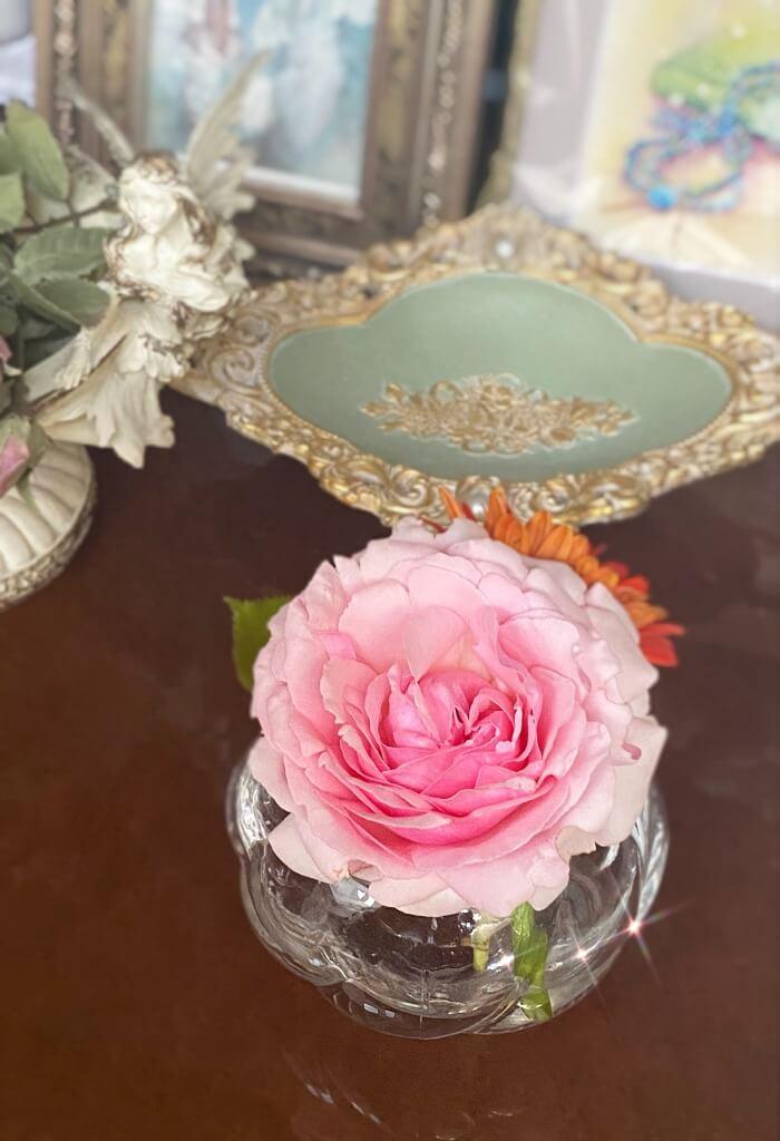clayart-jasmine